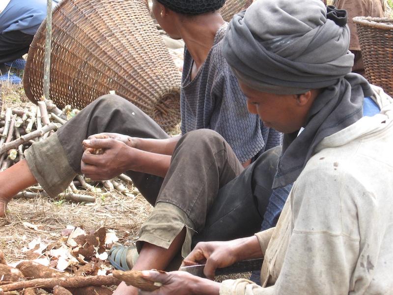 Women preparing yams